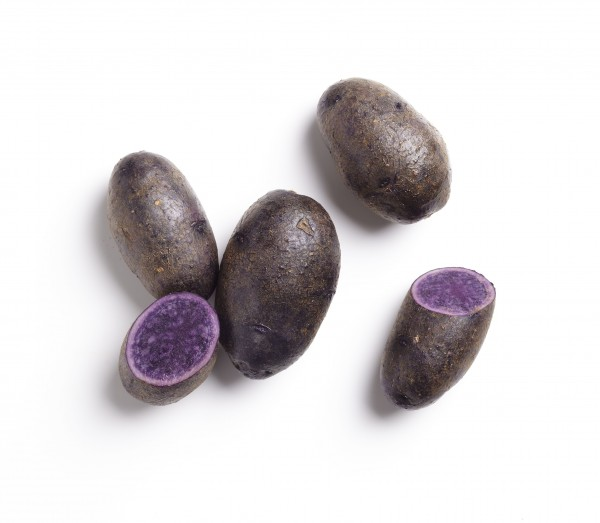 Kartoffeln violett Vitelotte