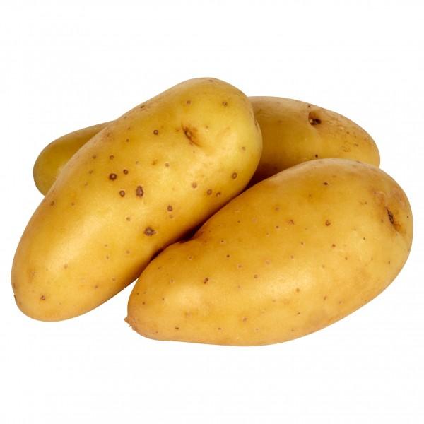 Kartoffeln Ratte