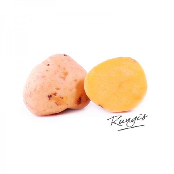 Kartoffel Andengold gelbfleischig und mehlig