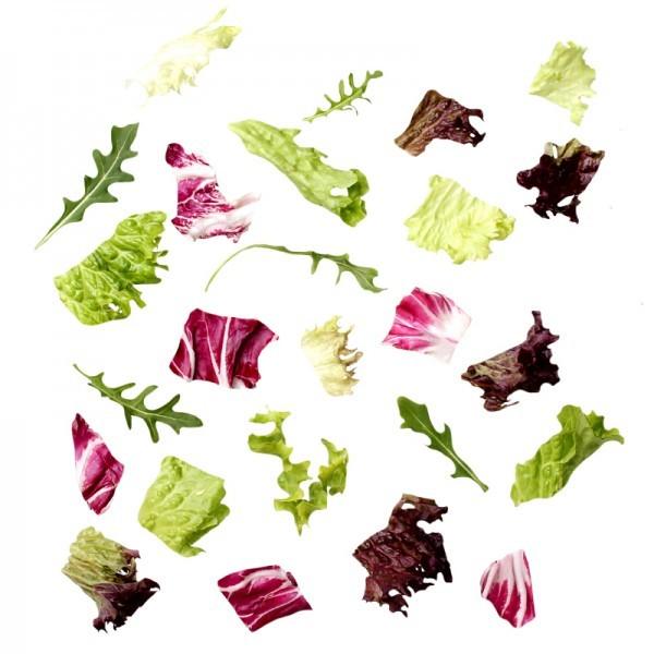 Salatmischung 'Milano'