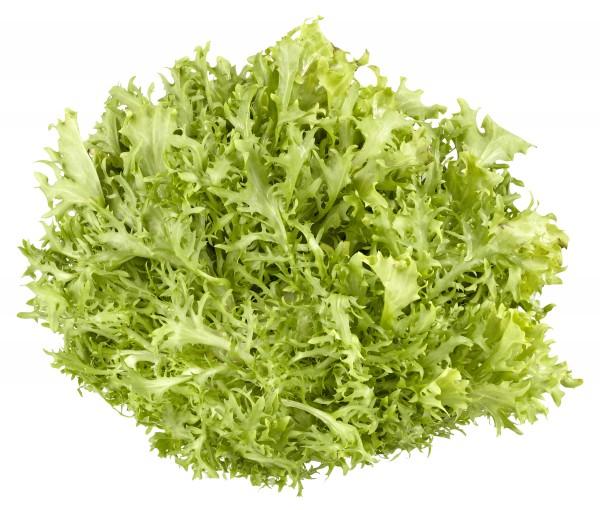Frisee Salat gewaschen