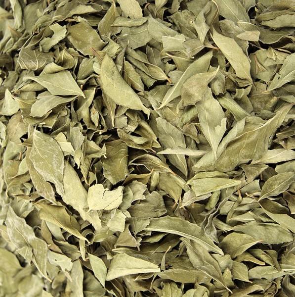 Curryblätter ganz getrocknet