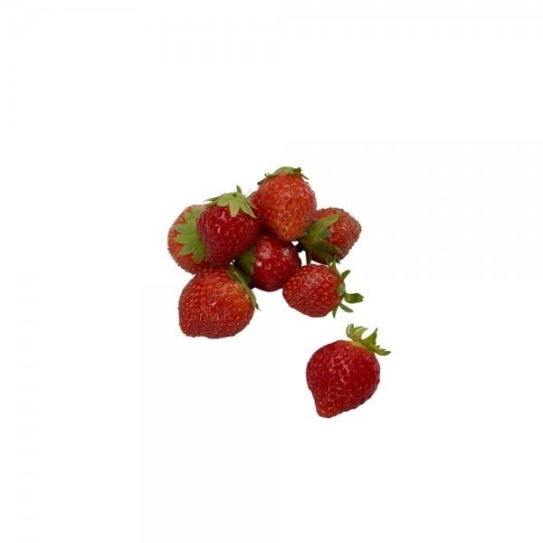 """Erdbeere """"Mara des Bois """""""