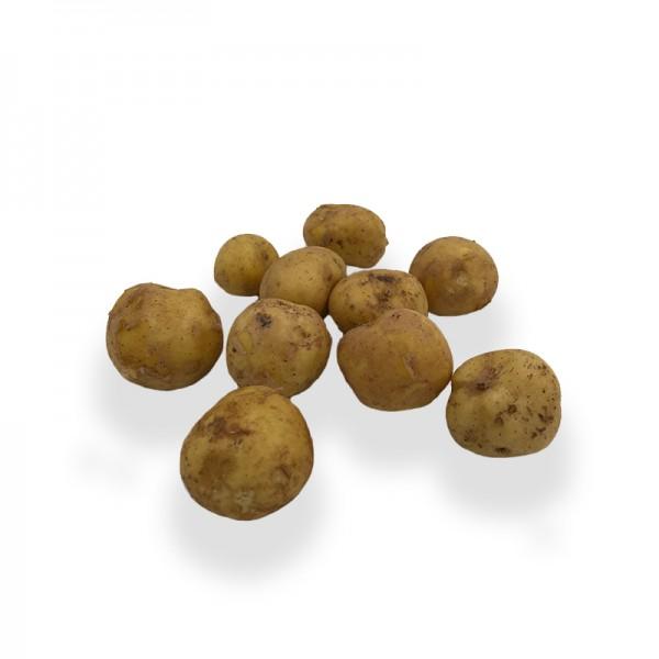 Kartoffel 'la Bonnotte'